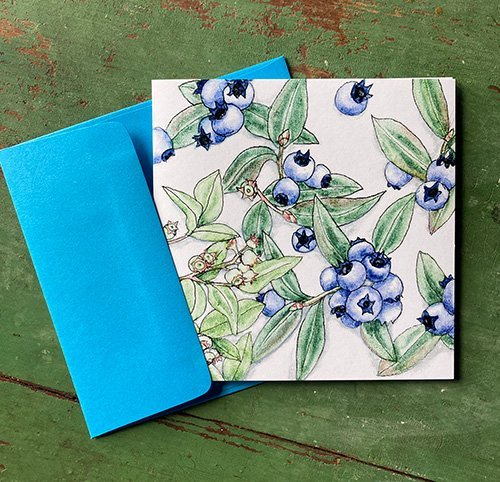 Wild Blueberries Note Cards